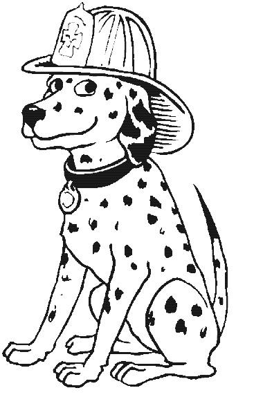 כלב מכבי אש